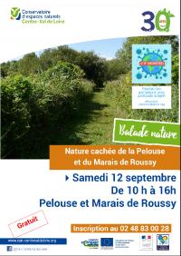 Idée de Sortie Saugy La nature cachée de la Pelouse et du Marais de Roussy