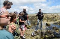 Escapade en Terre Iodée Visites Guidées avec Mélanie Chouan Morbihan