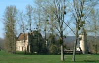 Idée de Sortie Andelain La forêt domaniale de Saint-Gobain