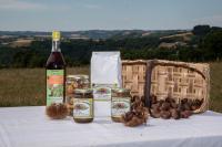 Idée de Sortie Vezels Roussy Marrons de l'Aveyron - Goûtez La Châtaigne