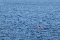 Idée de Sortie Saint Jacut de la Mer Club Nautique de Saint-Jacut-de-la-Mer