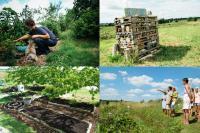 Jardin simply permaculture Lot et Garonne