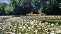 Idée de Sortie Beaupouyet Canoë-kayak à St Martial d'Artenset