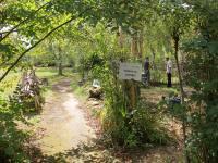 Le Jardin buissonnier Landes