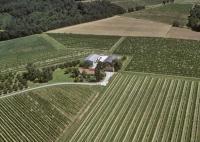 Idée de Sortie Saint Nexans Vignoble de la Grande Borie