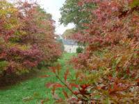 Parc Le Grand Courtil Morbihan