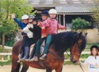 Idée de Sortie Queyssac Centre Equestre Poney-Club Saint Sauveur