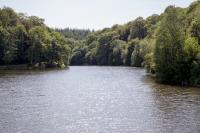 Idée de Sortie Saint Pois Forêt Domaniale de Saint-Sever