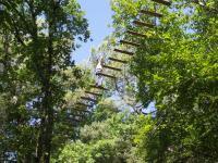 Idée de Sortie Saint Vincent le Paluel La Forêt des Ecureuils