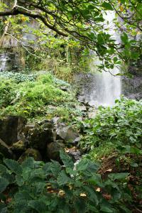 Idée de Sortie La Réunion Anse des Cascades