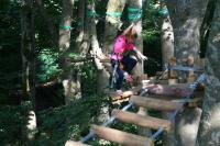 Idée de Sortie Curan Grimpe et Cimes - Parcours Acrobatique - Quick Jump