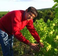 Idée de Sortie Saint Satur Visite et dégustation dans les vignes au Domaine Vincent Grall