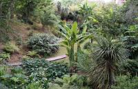 Le Jardin des Barthes Landes