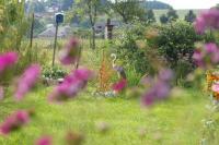 Idée de Sortie Floing Les Jardins Familiaux de Sedan (depuis 1889)