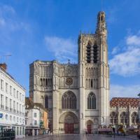 Idée de Sortie Yonne Cathédrale Saint-Etienne