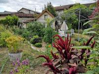 040821-au-281021-vegetal-au-fil-des-saisons-Plantabonheur Souillac