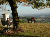 Idée de Sortie Sainte Eulalie d'Eymet Soumensac, un village perché au coeur du vignoble de Duras