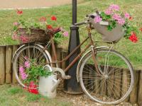 Idée de Sortie Tournes SURY, Village Fleuri 3 Fleurs