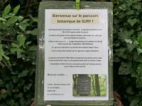 Idée de Sortie Tournes Sentier Botanique