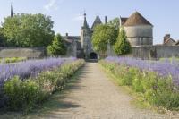 Jardin de Talcy Loir et Cher