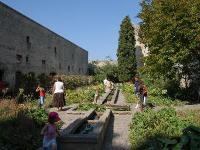 Jardin du chateau de Tarascon Bouches du Rhone
