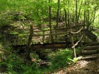 Idée de Sortie Vezels Roussy Sentier de l'imaginaire : circuit la Forêt Magique