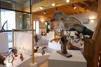 Idée de Sortie Maisonnais Musée des Racines