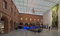 LE MUSEUM DE TOULOUSE Toulouse