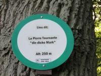 Idée de Sortie Lixing lès Saint Avold PIERRE TOURNANTE ''DICKE UDEL''