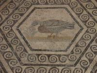 Idée de Sortie Vaucluse Le Musée archéologique Théo Desplans