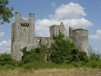 Idée de Sortie Bourgogne Château de Passy-les-Tours