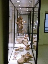 Idée de Sortie Velaux Musée Moulin Seigneurial