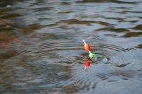 Idée de Sortie Indre Pêche à l'étang de la Sablière