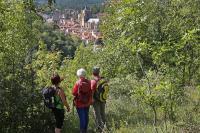 Idée de Sortie Aveyron Randonnée : Circuit du Boï