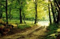 Idée de Sortie Dordogne Boucle de la bastide