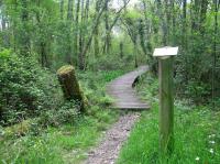 Idée de Sortie Landes Sentier botanique