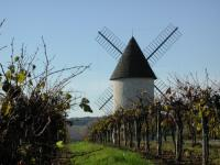Idée de Sortie Margueron Villeneuve-de-Duras, à l'orée de la Gironde