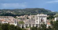 Idée de Sortie Villeneuve lès Avignon Collégiale Notre-Dame et son cloître