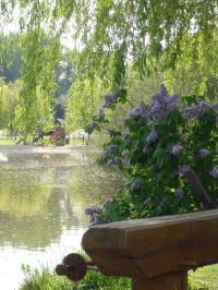 Idée de Sortie Indre Pêche, baignade, aire de jeux, tennis aux étangs de la Planche Baron