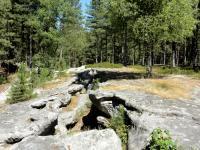 Idée de Sortie Villers Cotterêts La forêt de Retz