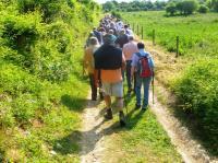 Evenement Vichel Nanteuil Matinée randonnée à Villers-Hélon