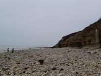 Idée de Sortie Basse Normandie Visite guidée des falaises des Roches noires