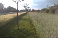 Parc des Lilas Val de Marne