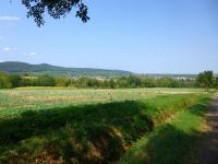 Idée de Sortie Alsace Entre vignes et montagnes