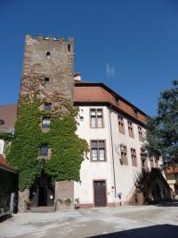 Idée de Sortie Alsace Château de Woerth