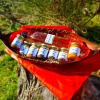 Magasin Aquitaine Le miel des Landais: Api Beesness et Bee Api