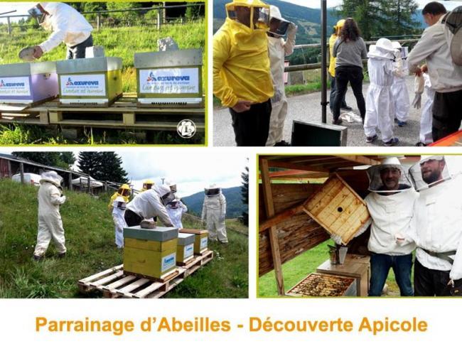 LE RUCHER DE LILOU - APISOURCE-Credit-Apisource--le-Rucher-de-Lilou