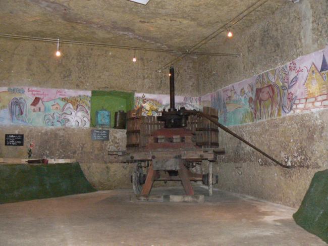 Conservatoire de la vigne et musée de la vigne et du vin-Credit-CDT41-emasson