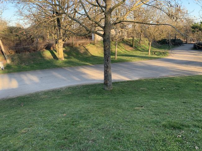 Parc de la Toison d'Or-Credit-Parc-de-la-Toison-d-or-Dijon-en-fevrier-2021-1--CC-BY-SA-4-0