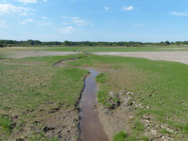 A la découverte d'un étang sans eau-Credit-PNR-Brenne